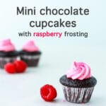 Mini chocolate cupcakes with pink raspberry frosting swirl