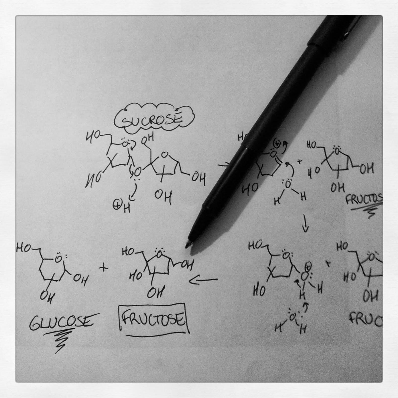 acid-catalyzed hydrolysis of sucrose | kitchen heals soul