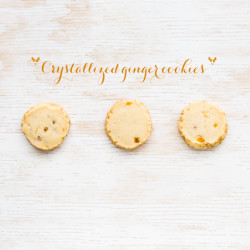 Crystallized ginger cookies - an easy slice-and-bake cookie recipe
