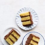 Cake slices of classic birthday cake: vanilla cake with chocolate frosting