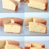 Comparing Vanilla cake crumb to find the best vanilla cake recipe ever