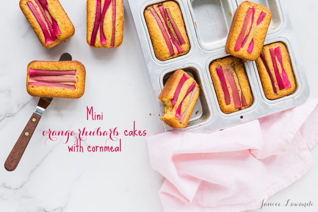 Mini orange rhubarb cakes with cornmeal baked in mini loaf cake pans for the perfect rhubarb treat that you can share