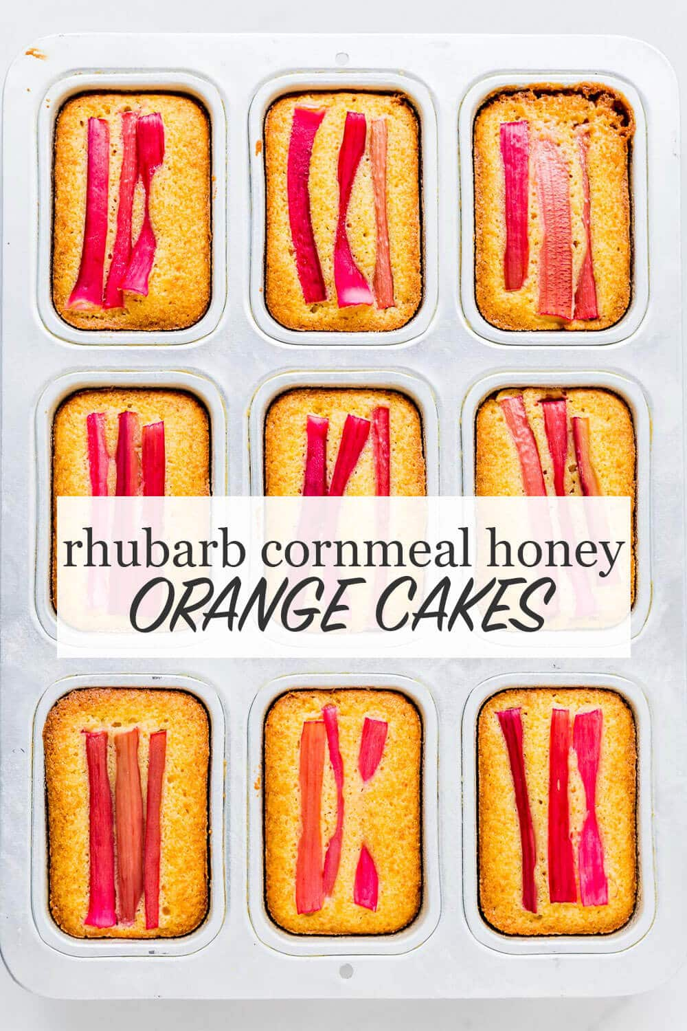 Mini orange cakes baked in a loaf cake pan topped with stalks of pink rhubarb