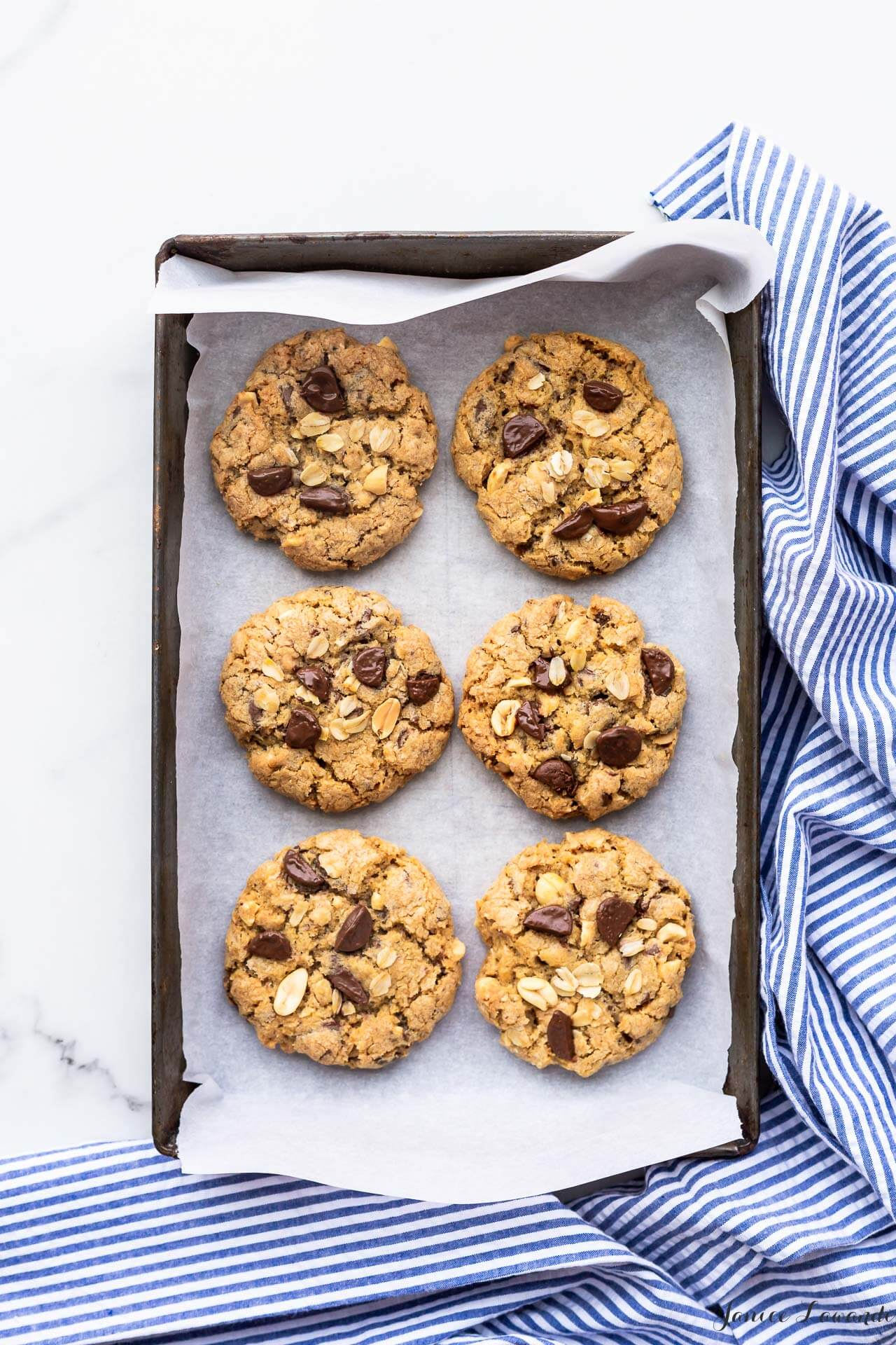 Freshly baked thick chewy oatmeal chocolate cookies with peanuts on a dark cookie sheet lined with parchment and a striped linen