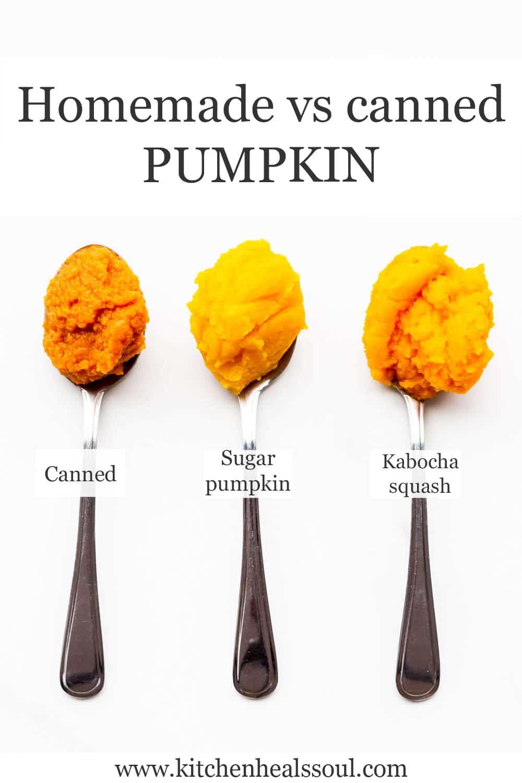 Canned pumpkin (dark orange) versus sugar pumpkin versus kabocha squash purées on spoons to compare them.