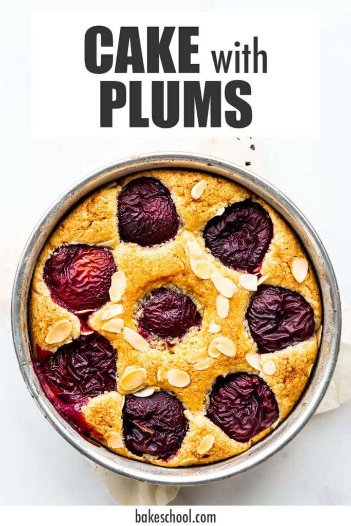 Cake with plums and sliced almonds, baked in a springform pan.