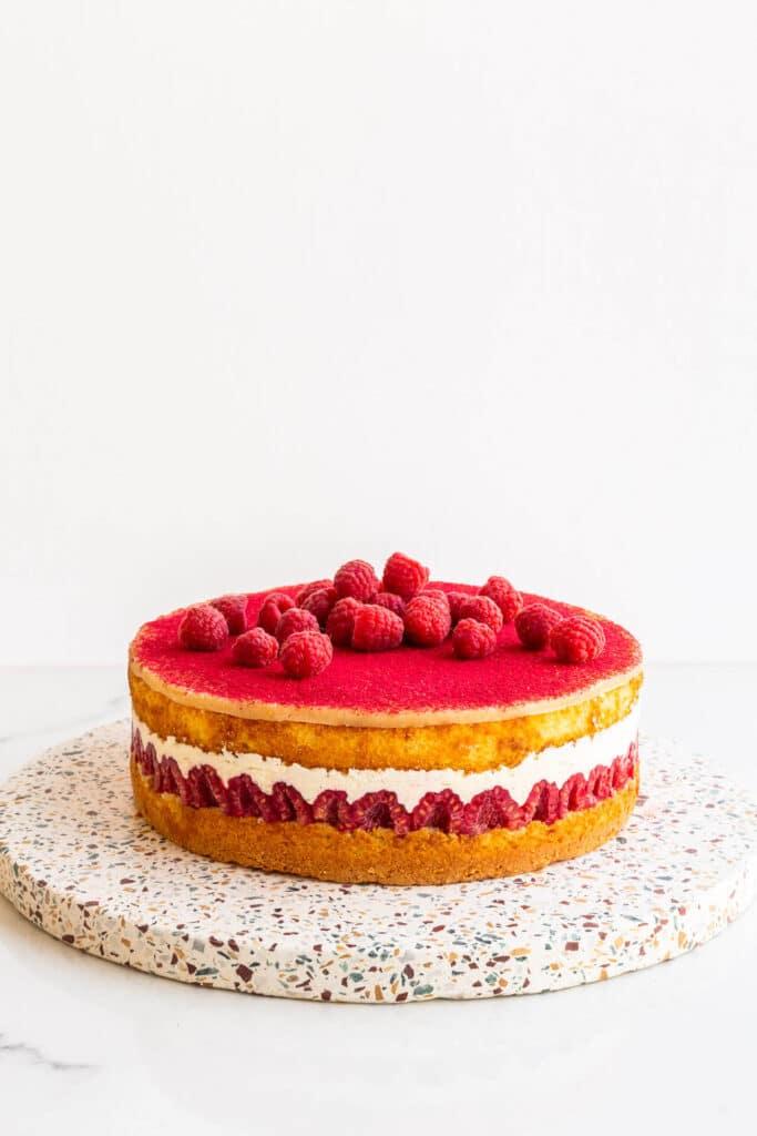 Raspberry layer cake on a terrazzo stone board.
