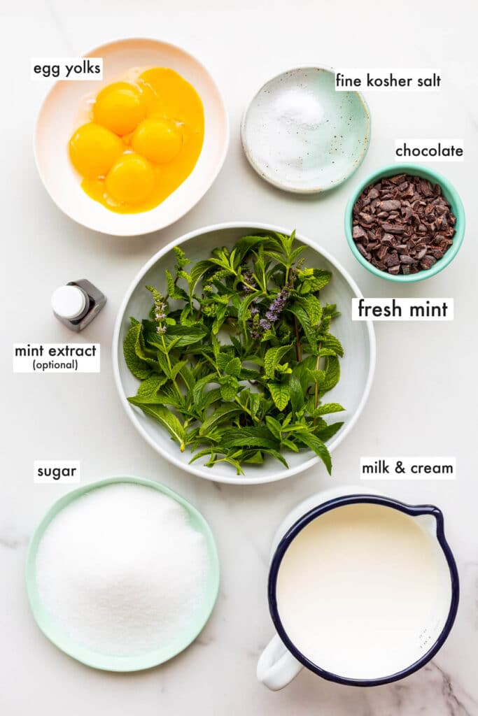 Ingredients for homemade mint chocolate chip ice cream measured out, including egg yolks, salt, fresh mint leaves, mint extract (optional), sugar, milk, and cream.
